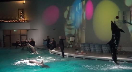Dolphinarium in Klaipėda